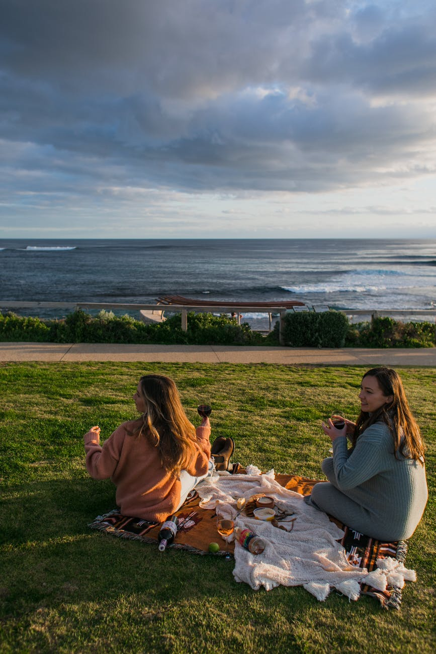 friends on picnic on lawn with green grass